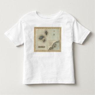 Madeira Ids Toddler T-Shirt