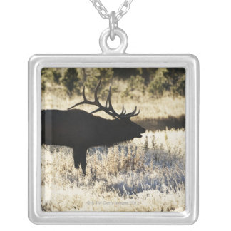 Madison River, Yellowstone NP, Wyoming, USA Silver Plated Necklace
