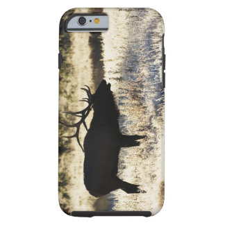 Madison River, Yellowstone NP, Wyoming, USA Tough iPhone 6 Case
