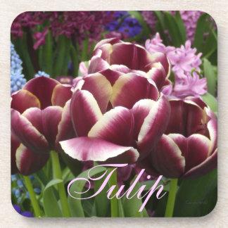 Magenta Cream Tulips Coaster