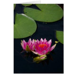 Magenta Lotus Waterlily Card