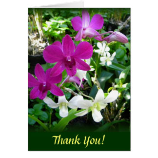 Magenta Orchids Card