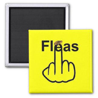Magnet Fleas Flip