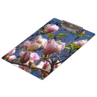 Magnolia Flowers Clipboards