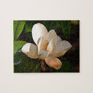 Magnolia (Mississippi and Louisiana) Jigsaw Puzzle