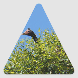 MAGPIE GEESE GOOSE RURAL QUEENSLAND AUSTRALIA TRIANGLE STICKER