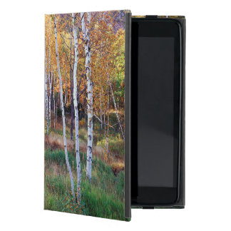 Maine, Acadia National Park, Autumn Case For iPad Mini