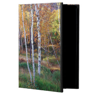 Maine, Acadia National Park, Autumn Cover For iPad Air