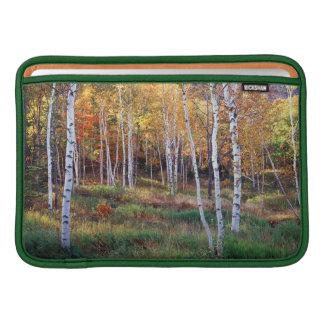 Maine, Acadia National Park, Autumn MacBook Sleeve