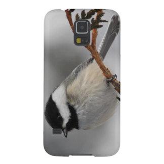 Maine Chickadee Galaxy S5 Cover