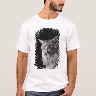 Maine Coon cat 2 T-Shirt