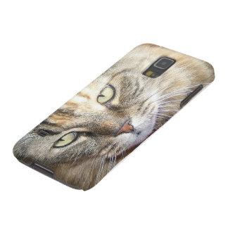 Maine coon cat eyes samsung galaxy 5 case