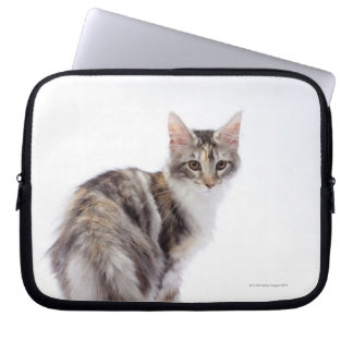 Maine Coon cat Laptop Sleeve