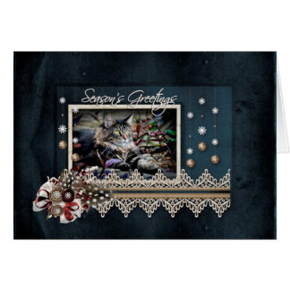 Maine Coon Cat Season's Greetings Holiday Card