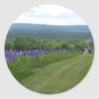 Maine Lupines Field Stockholm, ME Classic Round Sticker