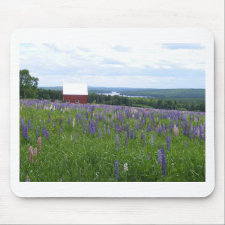Maine Lupines Field Stockholm, ME Mouse Pad