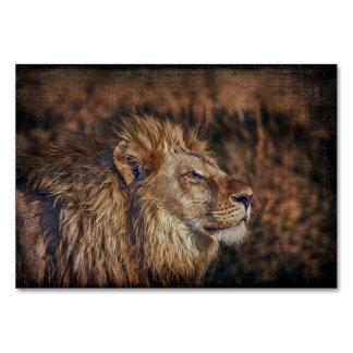 Majestic Lion Card
