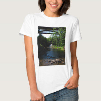 Majestic Waterfall at Gooseberry Falls - Nature Tee Shirt