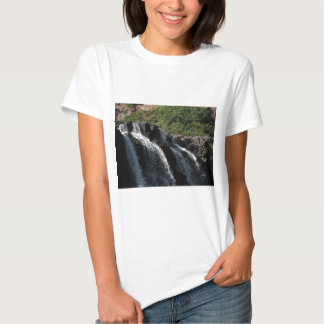Majestic Waterfall - Gooseberry Falls by the Trees T Shirt