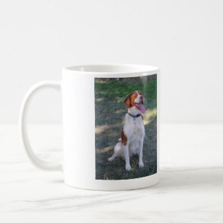 Major is a BRITTANY AKC Champion. Basic White Mug