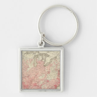 Malarial Deaths, Statistical US Lithograph Silver-Colored Square Key Ring