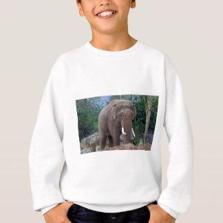Male bull elephant sweatshirt