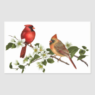 Male Female Cardinals Dogwood Blossoms Branch Rectangular Sticker