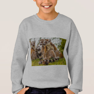 male lemur hugs his female  on  Hanes  Sweatshirt