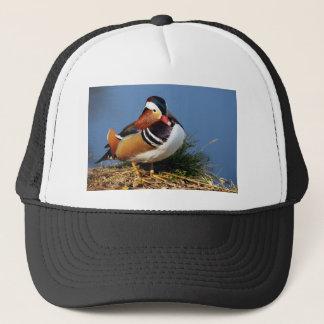 Male mandarin duck on the bank of pond trucker hat