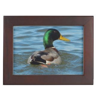 Mallard Duck Memory Boxes