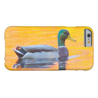 Mallard duck on orange lake, Canada Barely There iPhone 6 Case