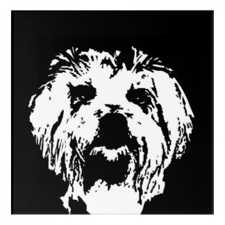 Maltese Black & White Acrylic Wall Art