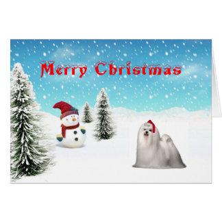 Maltese Christmas Card