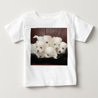 Maltese Puppies - Five of Them on T-shirts