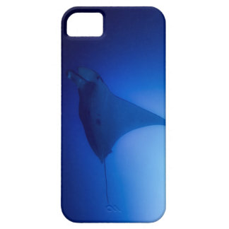 Manta Ray on the Great Barrier Reef iPhone 5 Case