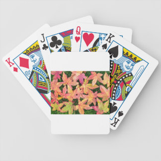 Many colorful autumn maple leaves on green grass bicycle playing cards
