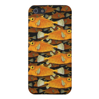 many fish [school] cases for iPhone 5
