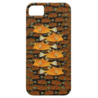many fish [school] iPhone 5 case