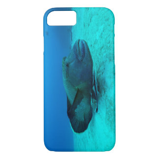 Maori Wrasse on the Great Barrier Reef iPhone 7 Case