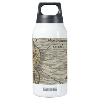 Map Monster/Sea Serpent Insulated Water Bottle