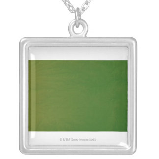 Map of Kansas 2 Silver Plated Necklace