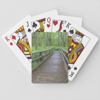 Maple Glade trail wooden bridge, ferns and Playing Cards