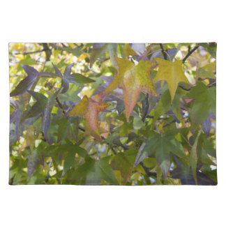 Maple Tree in Autumn Placemat