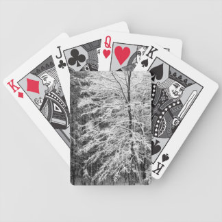 Maple Tree Outlined In Snow Bicycle Playing Cards