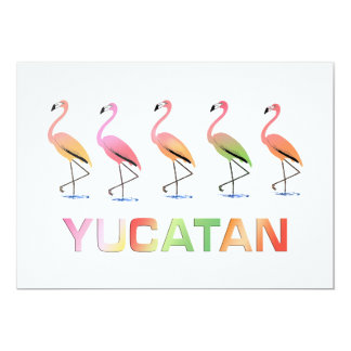 March of the Tropical Flamingos YUCATAN Card