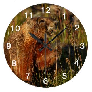 marmot eating grass large clock