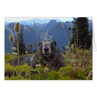 marmot in paradise card