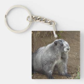 Marmot Key Ring