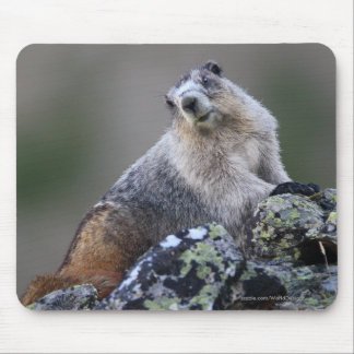Marmot Mouse Pad