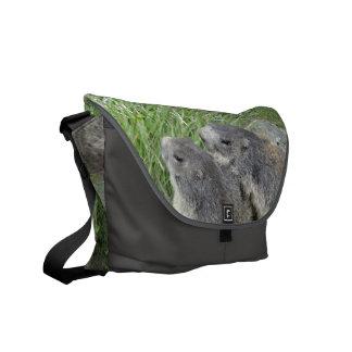 Marmots messenger bag